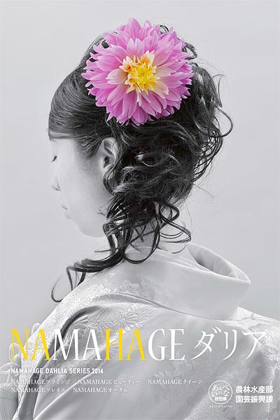 namahage_a1_poster_2013