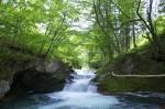 伏伸(ふのし)の滝