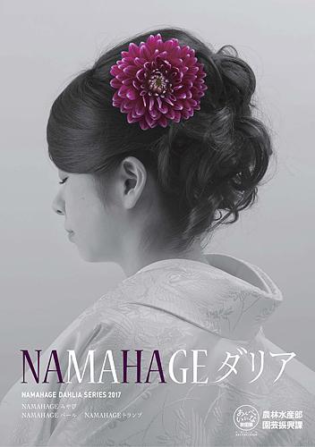 2017 NAMAHAGE ダリア ブランドイメージ ポスター