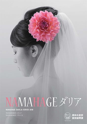 2018 NAMAHAGE ダリア ブランドイメージ ポスター