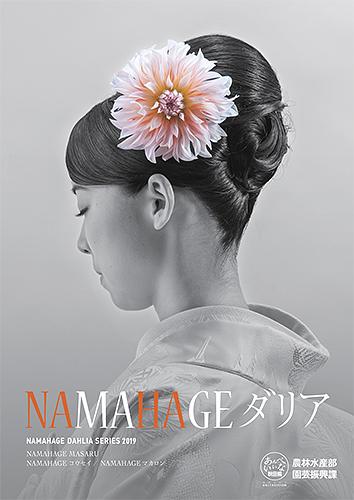 2019 NAMAHAGE ダリア ブランドイメージ ポスター