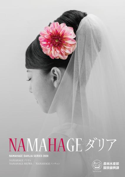 2020 NAMAHAGE ダリア ブランドイメージ ポスター
